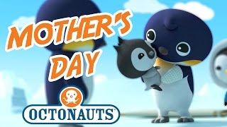 Octonauts - Mother's Day | Baby Cubs | Octonauts Compilation