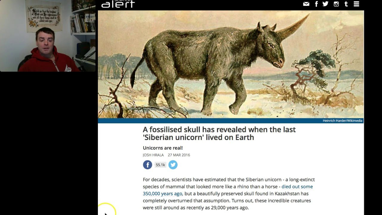 Unicorns In The Bible: Unicorn Found To Be REAL