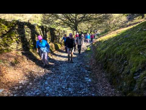 Adrc Tarn Hows Coniston Lake District April 27th