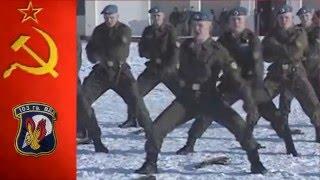 Гвардейская 103 ВДД