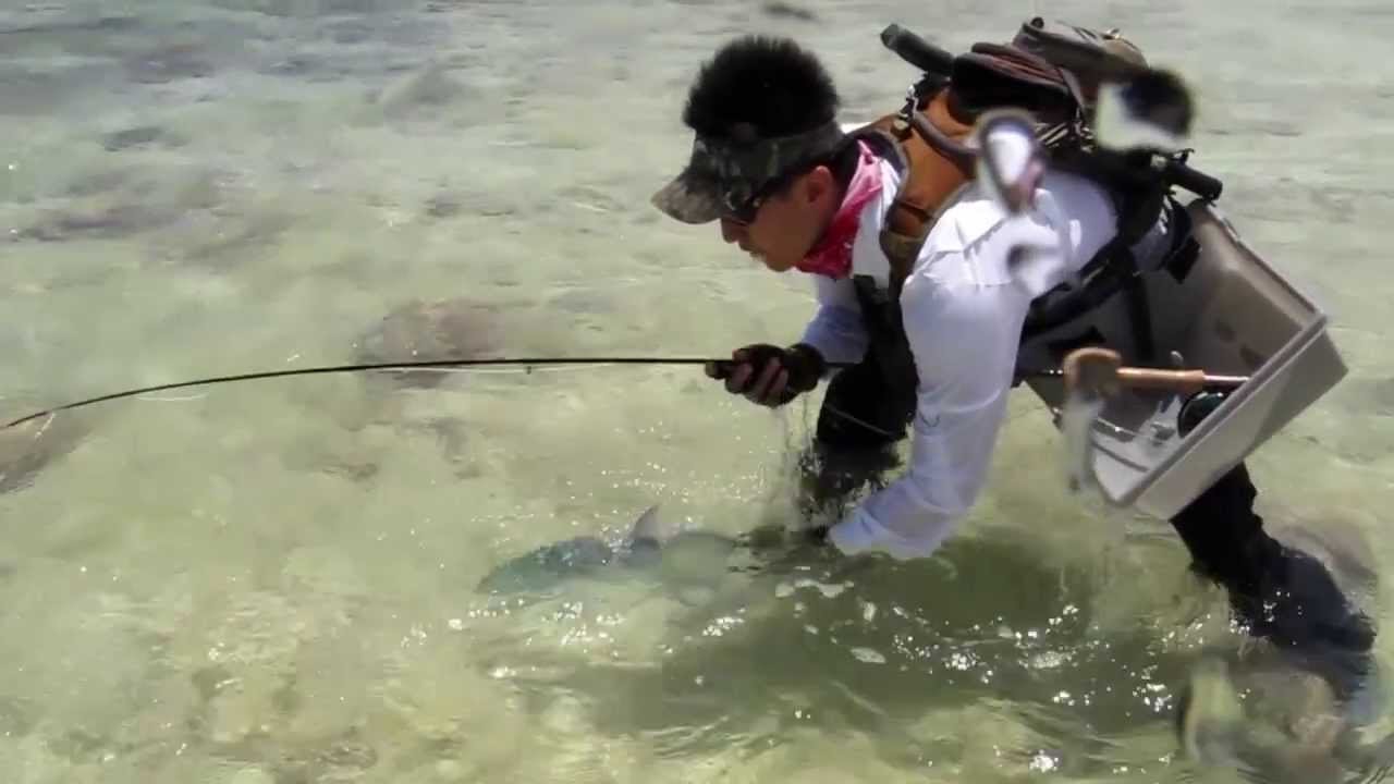 Kiritimati saltwater fly fishing expedition 2013 youtube for Salt water fly fishing