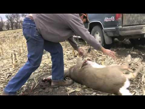 Nebraska 2012 Late Season Hunt