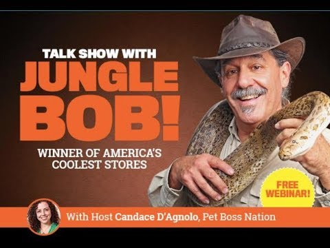 Pets+ LIVE! Season 1 - Episode 1: Winner of Coolest Stores, Jungle Bob