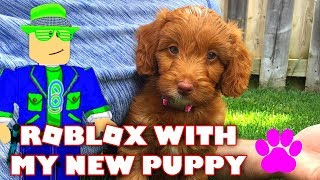 🔴 Roblox LIVE Stream with my NEW PUPPY 💗| Roblox Jail Break, Meep City | Come Play With Us!