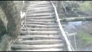 Crossing Unstable Wooden Bridge