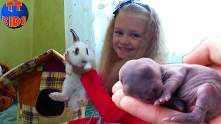 ВЛОГ Играем с Котенком Барсиком Ярослава едет в Деревню играть с маленькими животными Часть 1
