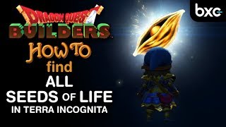 Dragon Quest Builders - How to find all seeds of life in Terra Incognita