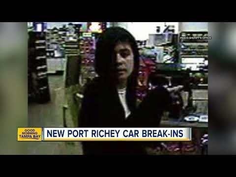Pasco deputies search for suspect in car break-ins