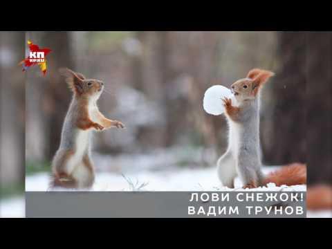 Самые завораживающие снимки из проекта «Лучшие фотографии России-2016»