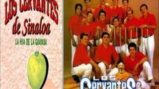 los girasoles en vivo Con Los Cervantes de Sinaloa de Leyva
