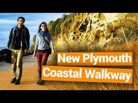 New Plymouth Coastal Walkway - New Zealand's Biggest Gap Year – Backpacker Guide New Zealand