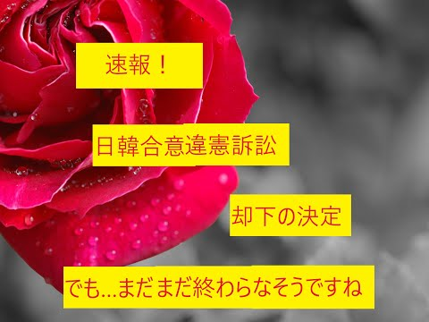 まとめサイト速報+