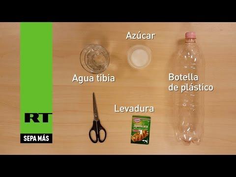 Cómo hacer una sencilla y eficaz trampa antimosquitos