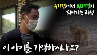 유기견에서 반려견이 되어가는 과정- [이찬종TV EP.16]