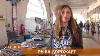 В Перми выросли цены на рыбу(Где найти золотую рыбку? В последнее время такой вопрос остро не стоит. Она есть на прилавке любого магазина..., 2014-09-15T07:22:17.000Z)