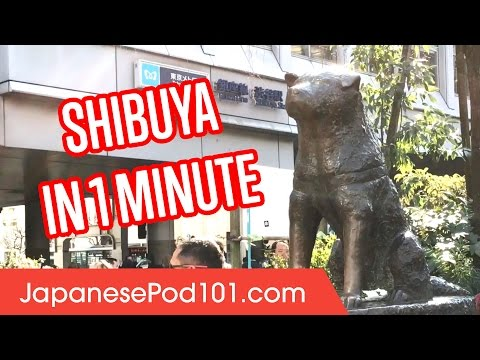 Shibuya in 1 minute - Best of Tokyo Districts