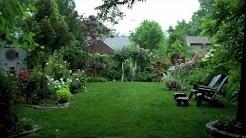 Chantana Garden Arlington, Virginia