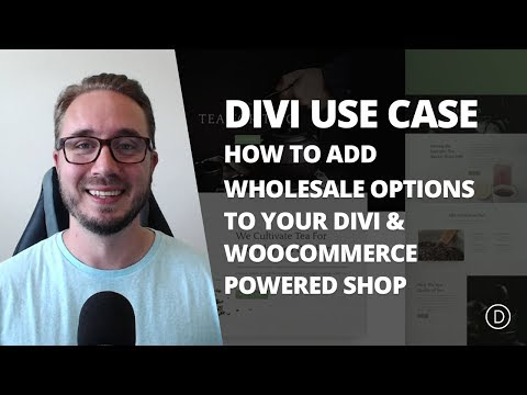 How to Add Wholesale Options to Your Shop with Divi