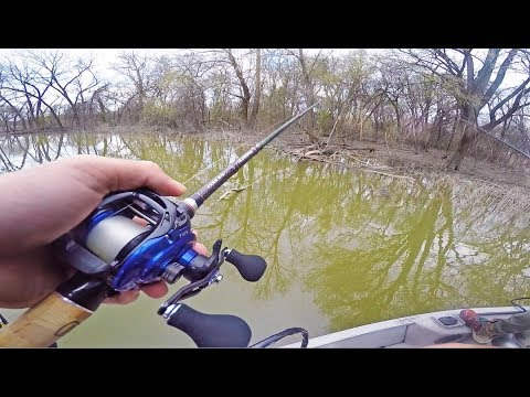 How Big Was That Fish? -- (Flipping BIG Trees For Spring Bass)