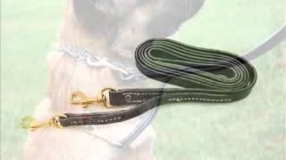 Leerburg's New Patented Prong Collar Leash™
