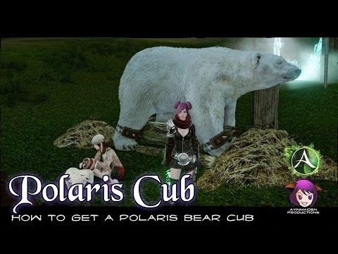 ★ Archeage ★ - How to get a Polaris Bear Cub