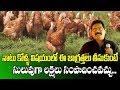 Natu Kolla Pempakam || Best Tips For Beginners || Dr CH Ramesh || SumanTV Rythu