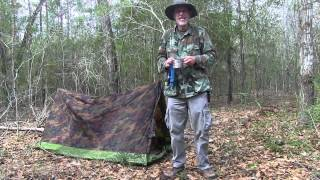 Dispersed Primitive Camping in a US National Forest