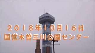 国営木曽三川公園センター・コスモス・10月16日