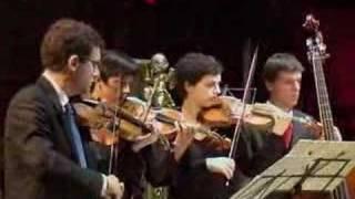 Vivaldi, Estate, 1: Allegro non molto
