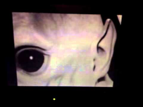 TOP SECRET!! REAL PICS, FOOTAGE. EVIDENCE OF ALIENS PROOF ... Real Alien Footage 2013