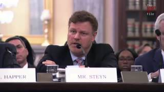 Mark Steyn rebukes democrats in climate hearing: 'You're effectively enforcing a state ideology'