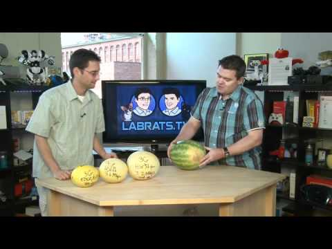 3G and 4G Explained - Food Demo - Lab Rats #233
