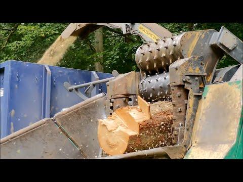 ein Tag in der Ziegelrodaer Forst, inkl. O.-Ton [Luftaufnahmen] 2018
