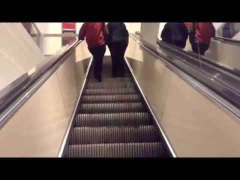 Repeat Otis Escalators @ Macy's, Eastfield Mall, Springfield