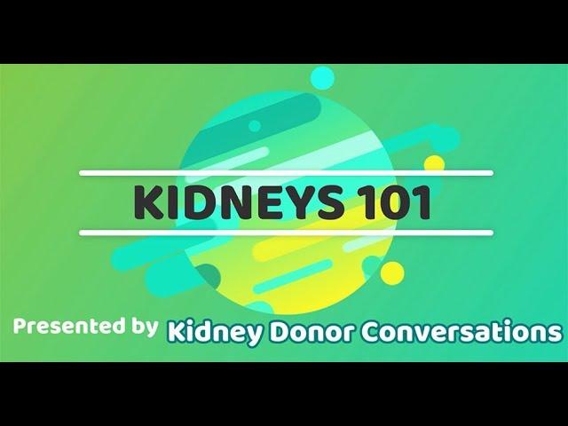 Kidneys 101