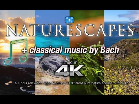 "40 NATURE SCENES in 4K + Bach Classical Music: ""NatureScapes"" 1 HR Relaxation Vid"