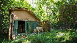 Lovely Girl Build Beautiful Grass Roof House for Little Puppies