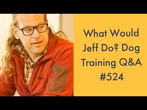 Stop dog barking | Training Aggressive Dogs | What Would Jeff Do? Dog Training Q & A #524