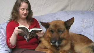 Wonder Dogs: 101 German Shepherd Dog Films - Book Trailer