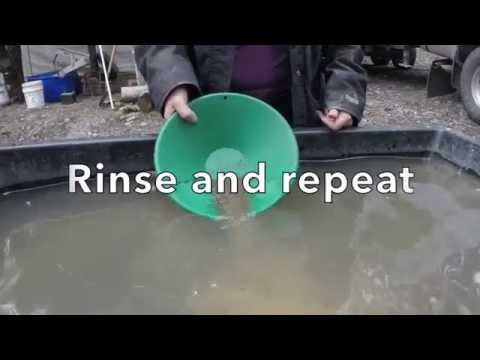 Constellation Mining Company - Gold Panning Video