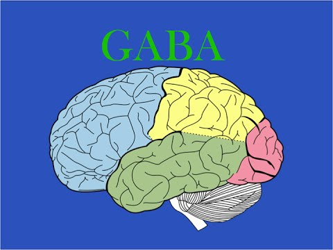 EMP Neuroscience: GABA