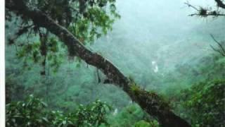 GRUPO CONSTELACION -- OTRA COPA --- JACALTENANGO