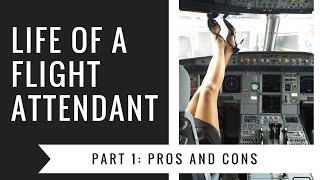 Pros and Cons of Being a Flight Attendant | Flight Attendant Edition | Tiffany Bland
