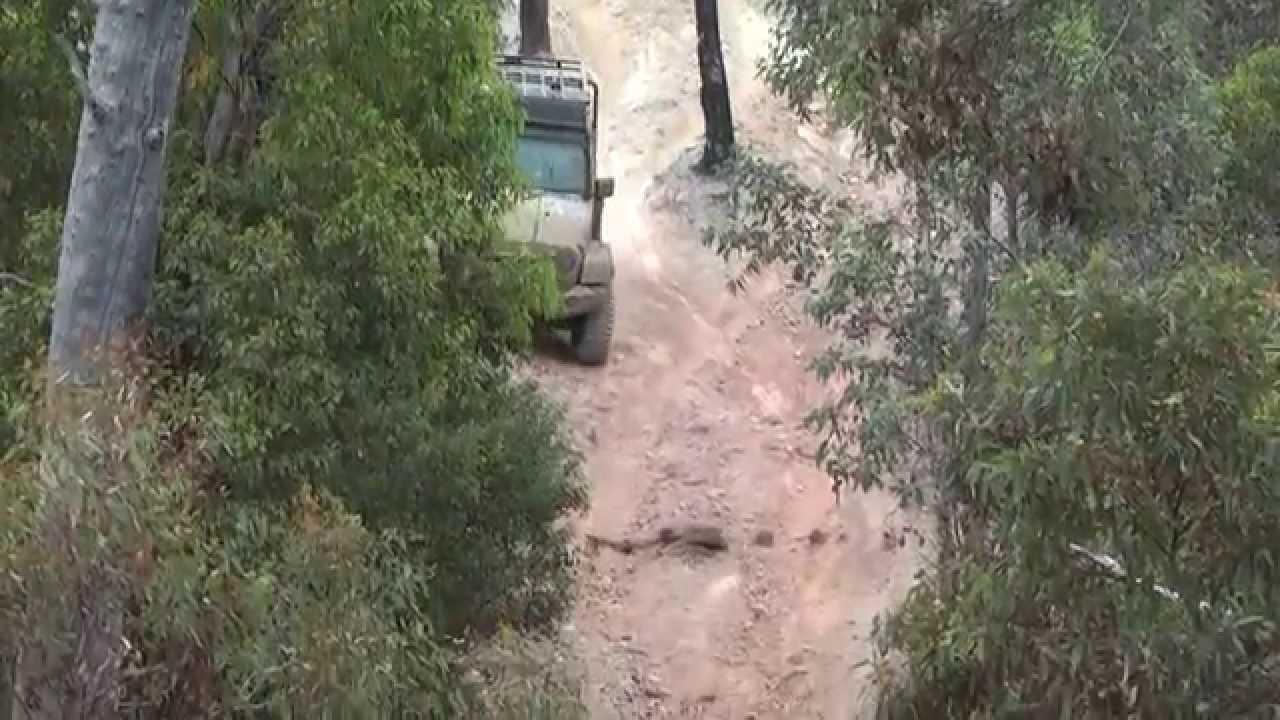 Off Road Sluts julimar state forest challenge: mud sluts