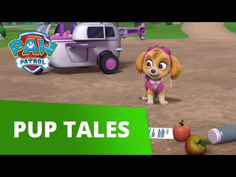 PAW Patrol | Pups Save a Good Mayor | PAW Patrol Official