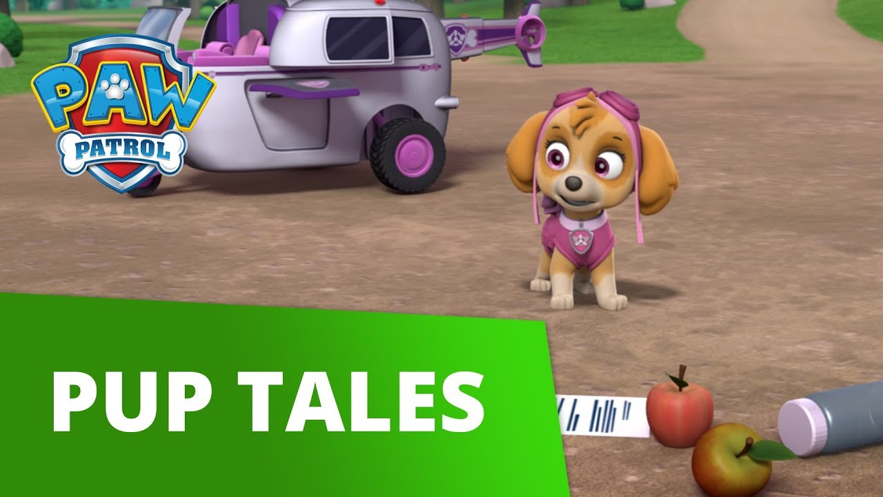 PAW Patrol | Pups Save a Good Mayor | PAW Patrol Official & Friends!