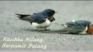 KASIHKU YANG HILANG.Desi Ratna Sari. lirik lagu