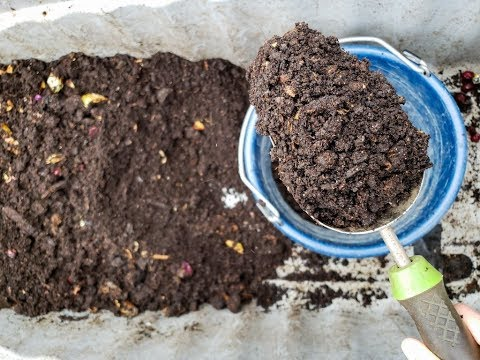 How to Harvest Worm Castings from a Simple Worm Compost Bin