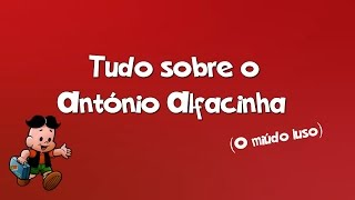 Tudo sobre o António Alfacinha