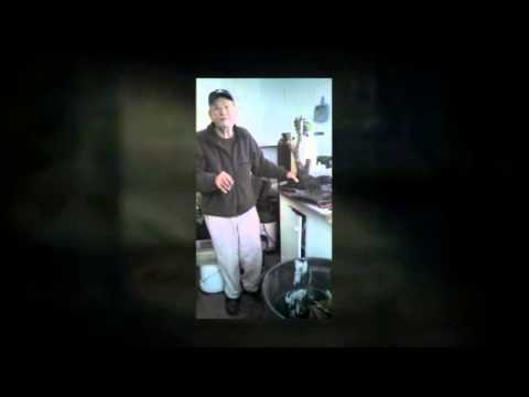 Bonsai Workshops Video